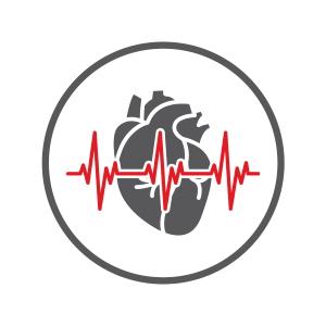 Icon Branchengruppe cardiovasculäre Medizinprodukte und HRM